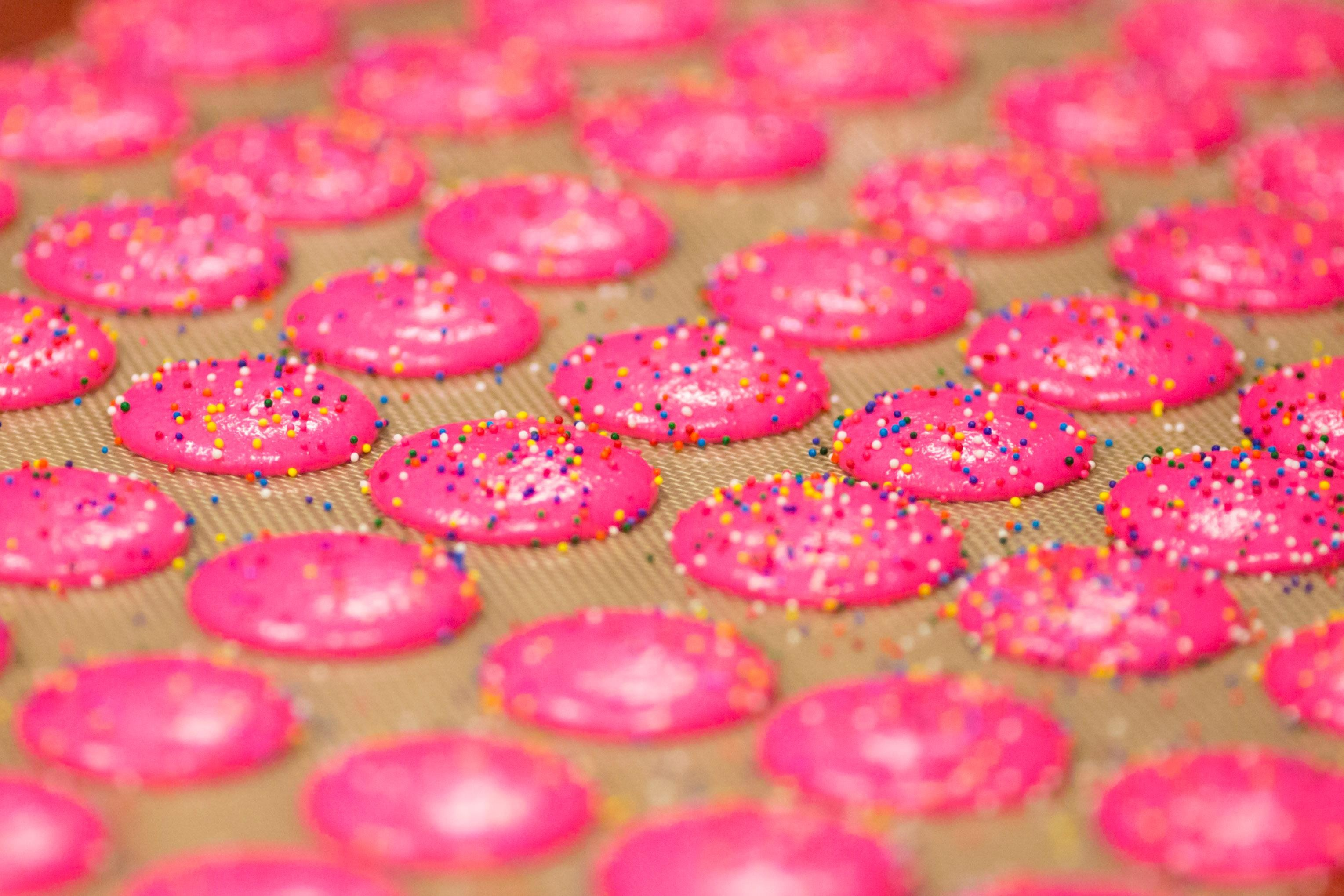 Remember Circus Animal cookies?! The bright pink and white little sprinkled-covered gems, of which you can eat and eat and eat forever? When we see these, we get instantly transported back to our childhood. And thanks to Trophy Cupcakes, we can enjoy these goodies in a WHOLE NEW WAY. That's right, Circus Animal macarons! We visited Trophy's bakery to see the making of these sweet treats, now available at all Trophy locations. And yes, we can confirm that they taste like the original cookie. More info at trophycupcakes.com. (Image: Sy Bean / Seattle Refined)